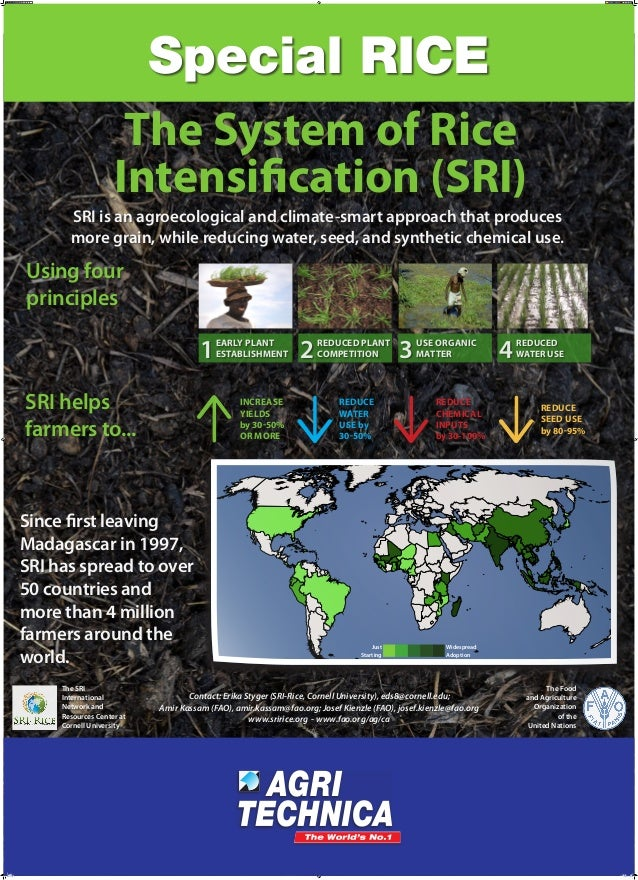 The System of Rice Intensification (SRI) SRI is an agroecological and climate-smart approach that produces more grain, whi...