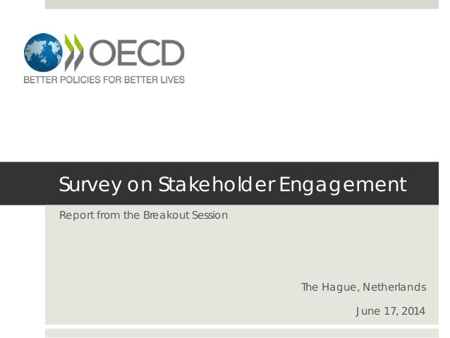 Survey on Stakeholder Engagement Report from the Breakout Session The Hague, Netherlands June 17, 2014