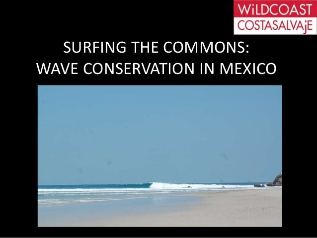 SAVSURFING THE COMMONS:WAVE CONSERVATION IN MEXICO