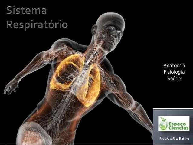 Anatomia Fisiologia Saúde Prof. Ana Rita Rainho