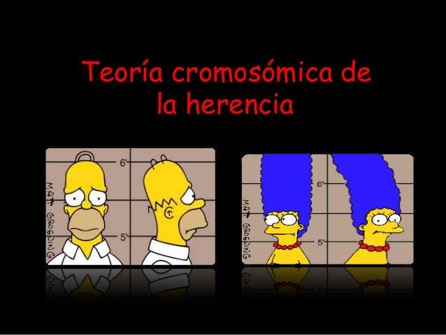 Te ´Teoría cromosómica de la herencia