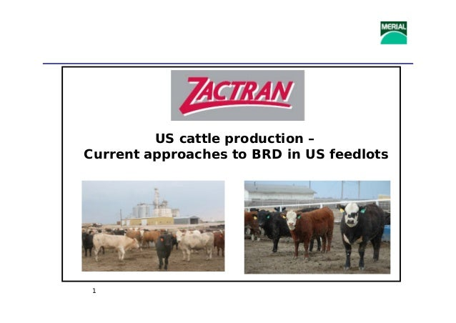 1 US cattle production – Current approaches to BRD in US feedlots