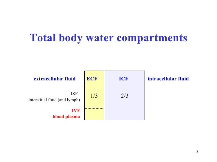body fat percentage into kg