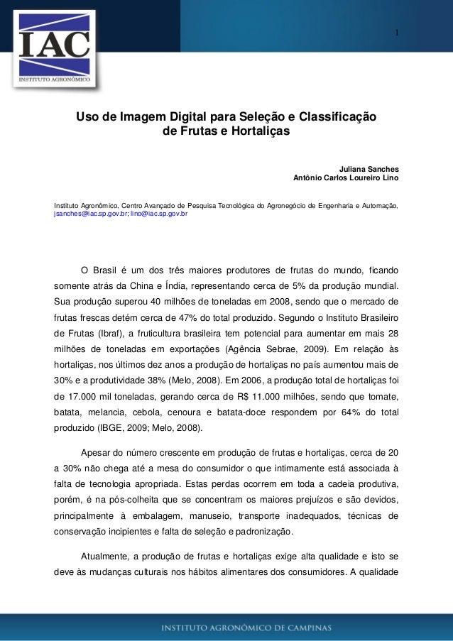 1 Uso de Imagem Digital para Seleção e Classificação de Frutas e Hortaliças Juliana Sanches Antônio Carlos Loureiro Lino I...