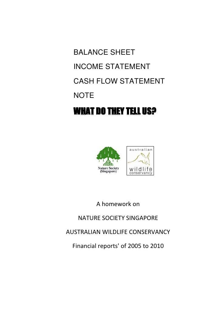 BALANCE SHEET  INCOME STATEMENT  CASH FLOW STATEMENT  NOTE  WHAT DO THEY TELL US?         A homework on   NATURE SOCIETY S...