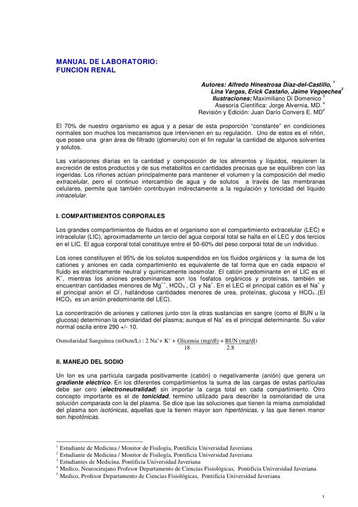 MANUAL DE LABORATORIO: FUNCION RENAL                                                                                      ...