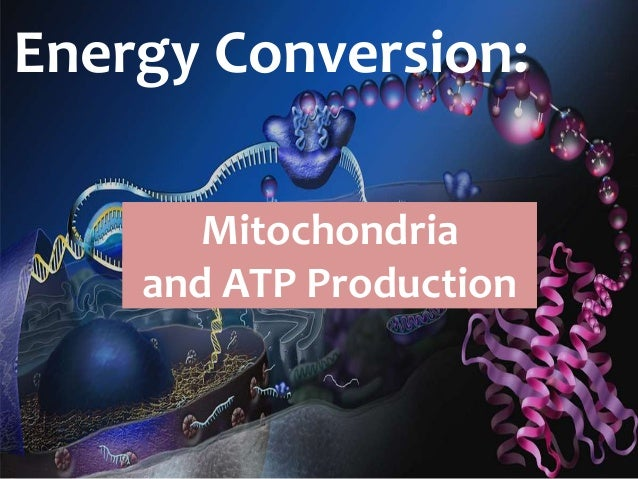 the production and use of atp What is atp is an important question asked in sports training because all energy production is powered by this source.
