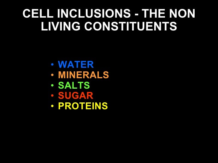 non living inclusions of plant cell