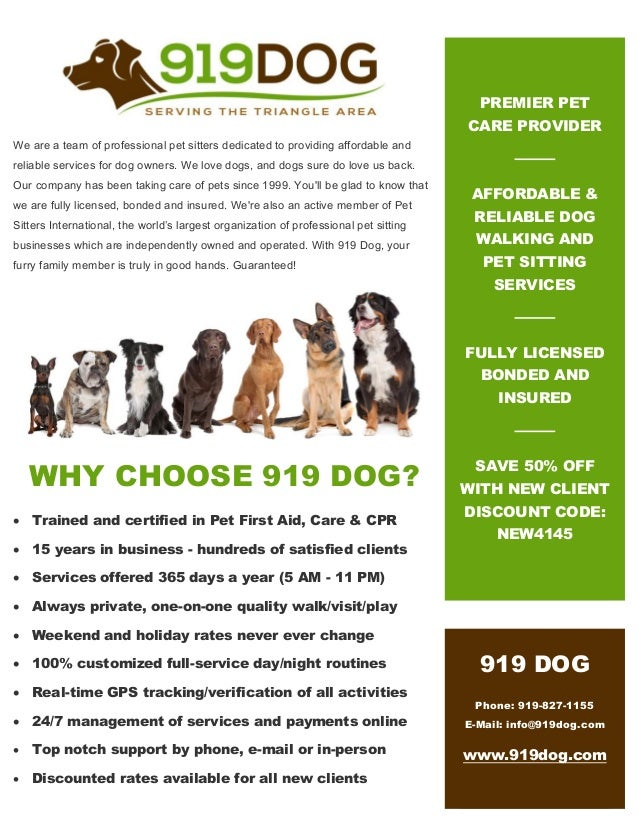 919Dog.com -- Local dog walking & pet sitting services in ...