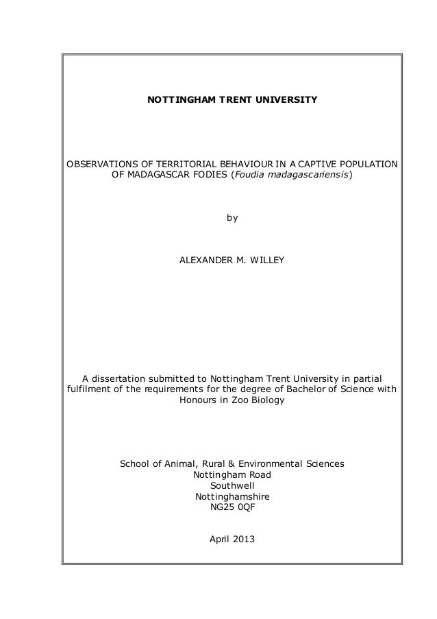 Bachelor dissertation what is dissertations