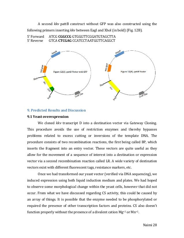 gateway cloning thesis The candidate confirms that appropriate credit has been given within the thesis  where reference has been made to the work  421 gateway cloning overview.