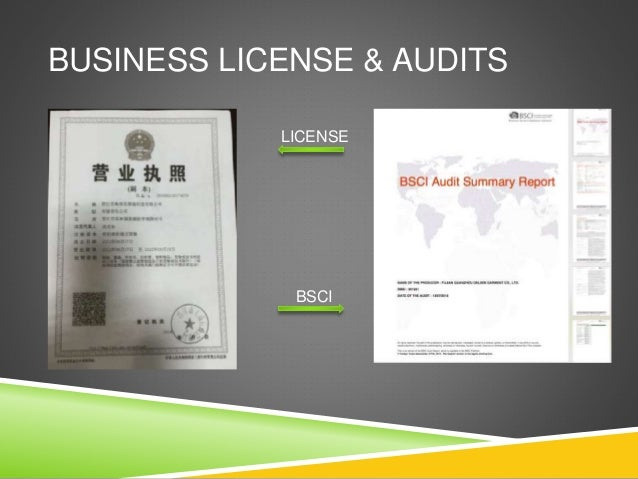 BUSINESS LICENSE & AUDITS LICENSE BSCI