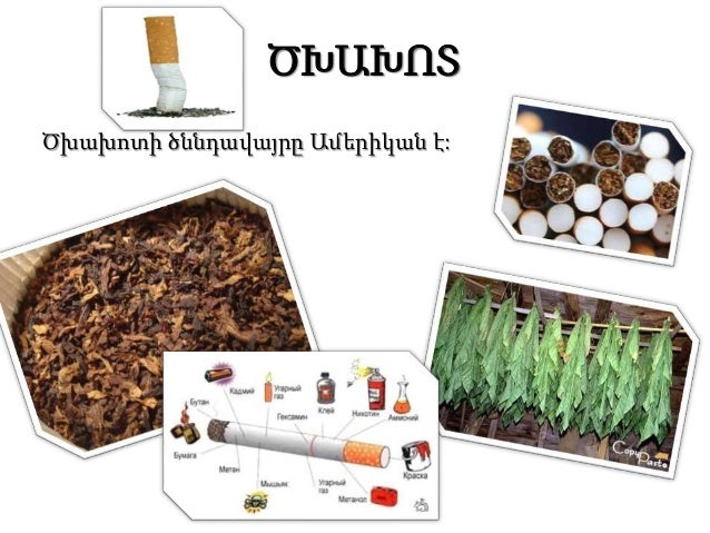 ԾԽԱԽՈՏԸ,ԱԼԿՈՀՈԼԸ,ԹՄՐԱՄԻՋՈՑԸ  և ՄԱՐԴՈՒ ՕՐԳԱՆԻԶՄԸ Slide 2