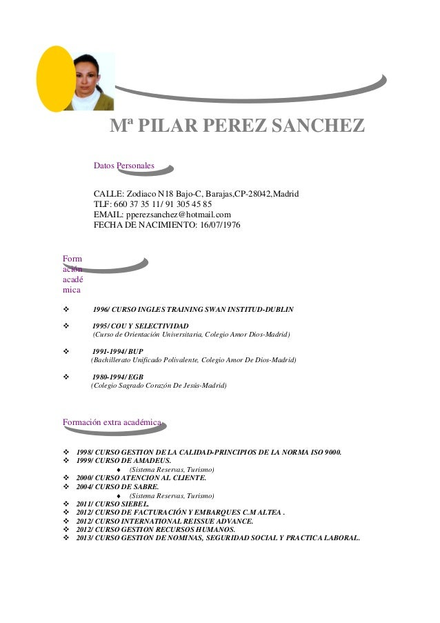 plantilla-curriculum-creativo pilar1