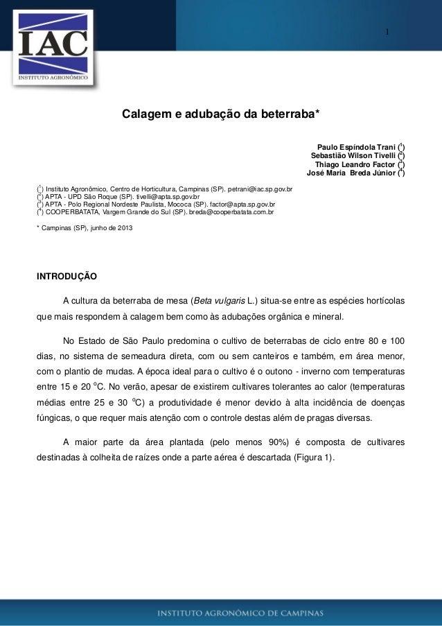 1  Calagem e adubação da beterraba* 1  Paulo Espíndola Trani ( ) 2 Sebastião Wilson Tivelli ( ) 3 Thiago Leandro Factor ( ...