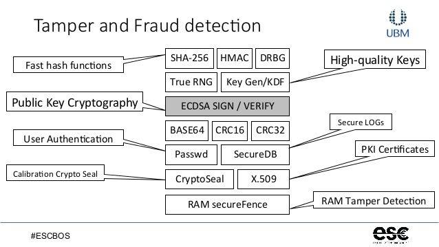 ImplementingCryptoSecurityARMCortex_Doin