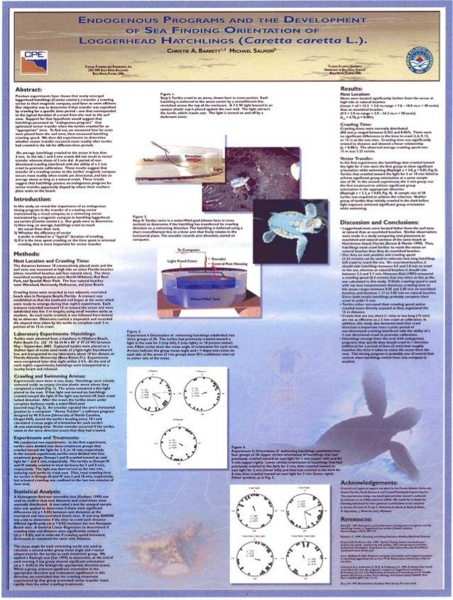 Sea Turtle Symposium Poster 2005