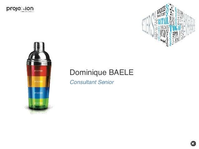 Dominique BAELE Consultant Senior