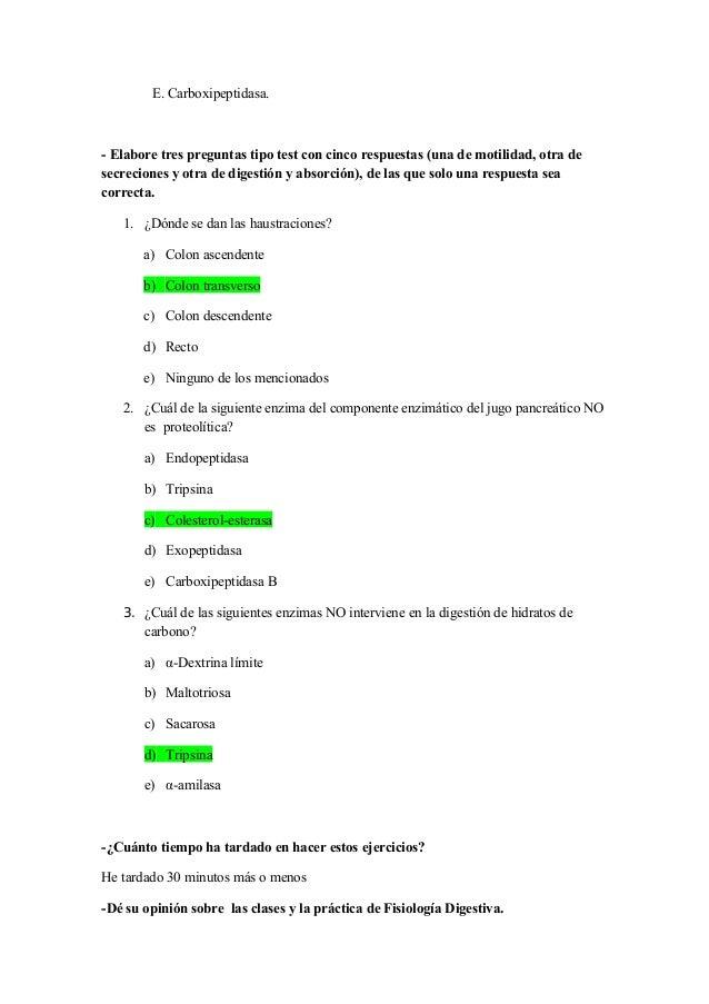 Bonito Anatomía Y Fisiología De Preguntas Y Respuestas Friso ...