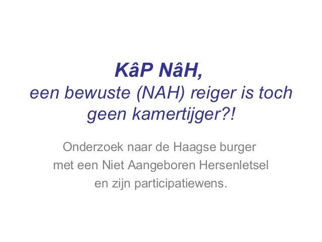 KâP NâH, een bewuste (NAH) reiger is toch geen kamertijger?! Onderzoek naar de Haagse burger met een Niet Aangeboren Herse...