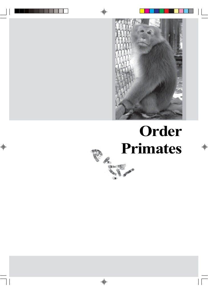 OrderPrimates
