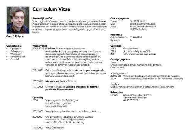 persoonlijk profiel in cv CV liggend