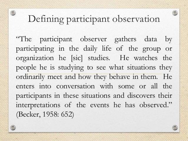 netviewer meet participant observer