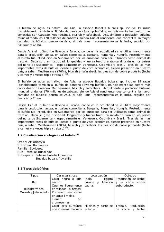 Vistoso Anatomía Búfalo De Agua Molde - Anatomía de Las Imágenesdel ...
