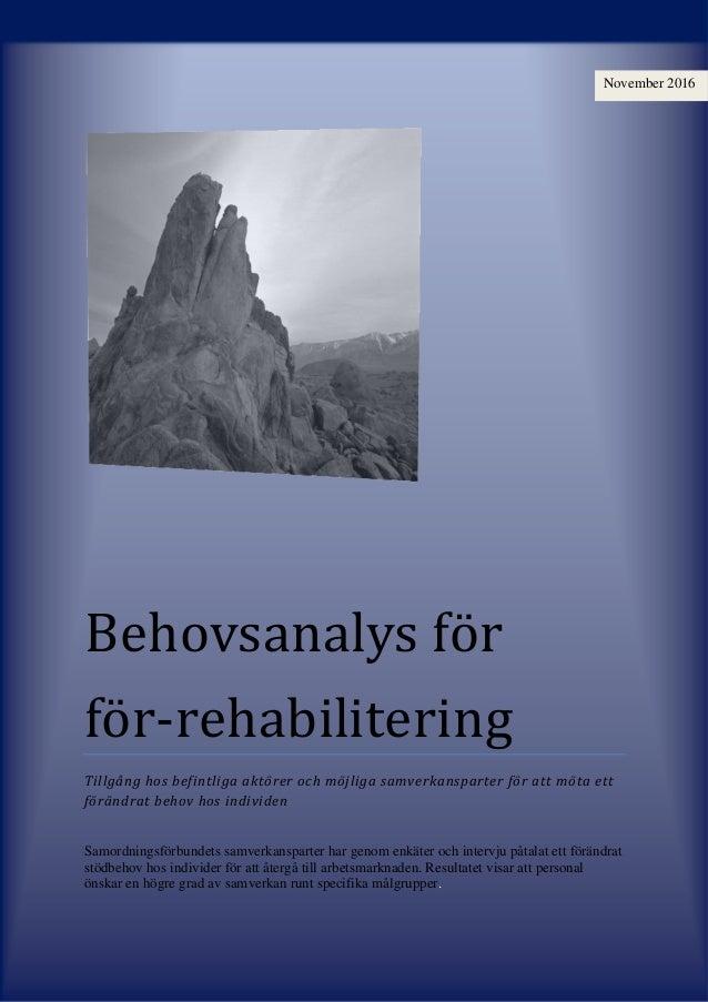Behovsanalys för för-rehabilitering Tillgång hos befintliga aktörer och möjliga samverkansparter för att möta ett förändra...