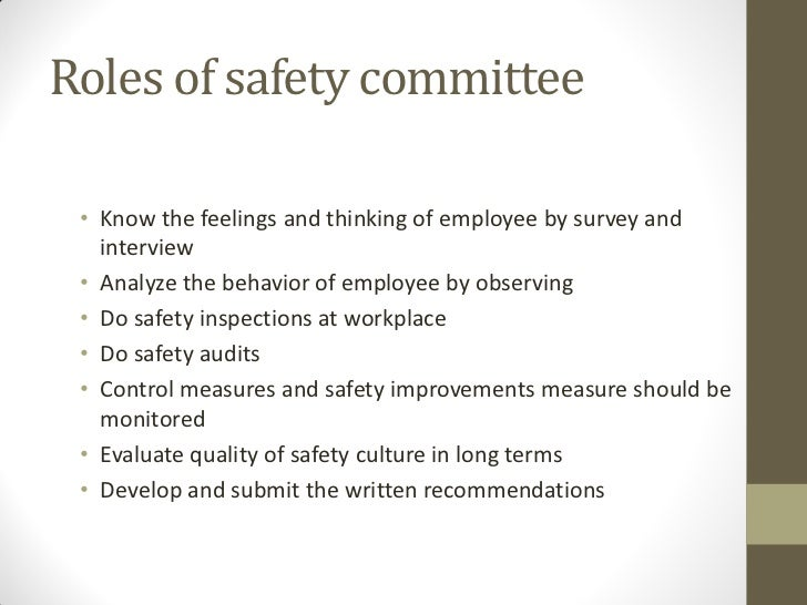99771562 Effective Safety Committees