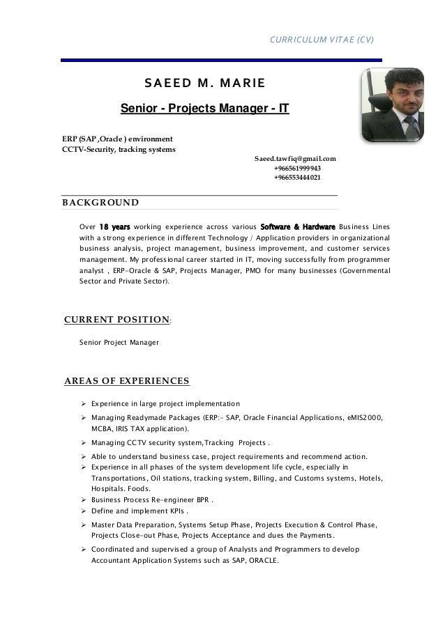 Senior IT Project Manager Ceo Cio