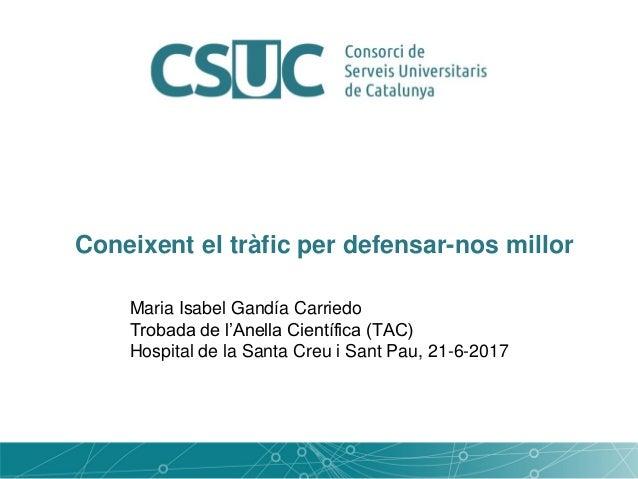 Coneixent el tràfic per defensar-nos millor Maria Isabel Gandía Carriedo Trobada de l'Anella Científica (TAC) Hospital de ...