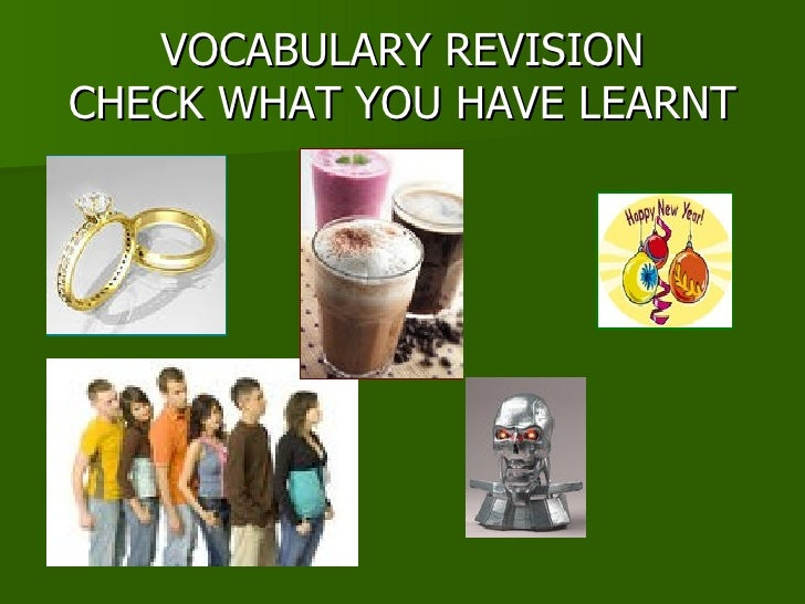 VOCABULARY REVISION CHECK WHAT YOU HAVE LEARNT
