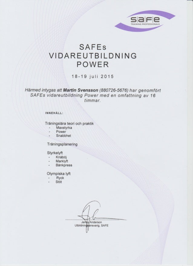 SAFE POWER