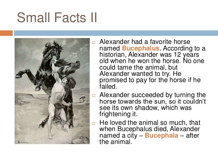 alexander the great and his great accomplishments Welcome to my alexander the great page alexander (356-323 bc) was the greatest general ever to live in his reign of thirteen years he fought four major battles and numerous minor ones.
