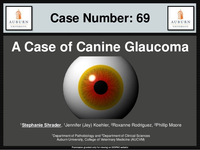 Case Number: 69 A Case of Canine Glaucoma Permission granted only for viewing on SEVPAC website 1Stephanie Shrader, 1Jenni...