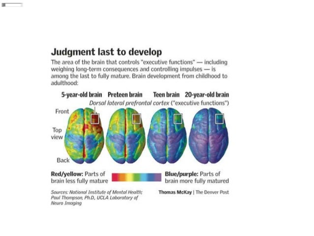 The Adolescent Brain Why Executive >> Executive Functioning And The Adolescent2