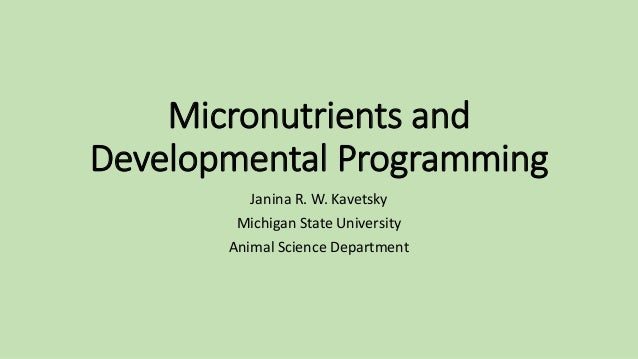 Micronutrients and Developmental Programming Janina R. W. Kavetsky Michigan State University Animal Science Department
