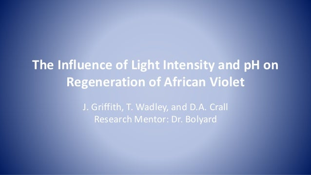 The Influence of Light Intensity and pH on Regeneration of African Violet J. Griffith, T. Wadley, and D.A. Crall Research ...