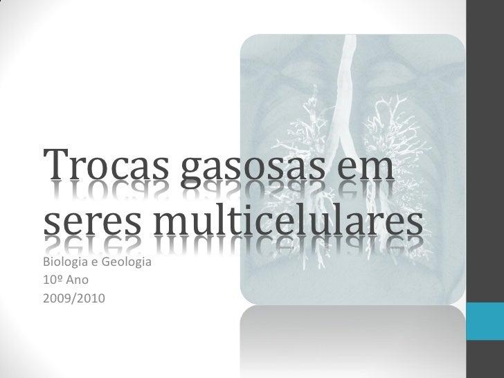 Trocas gasosas em seres multicelulares Biologia e Geologia 10º Ano 2009/2010