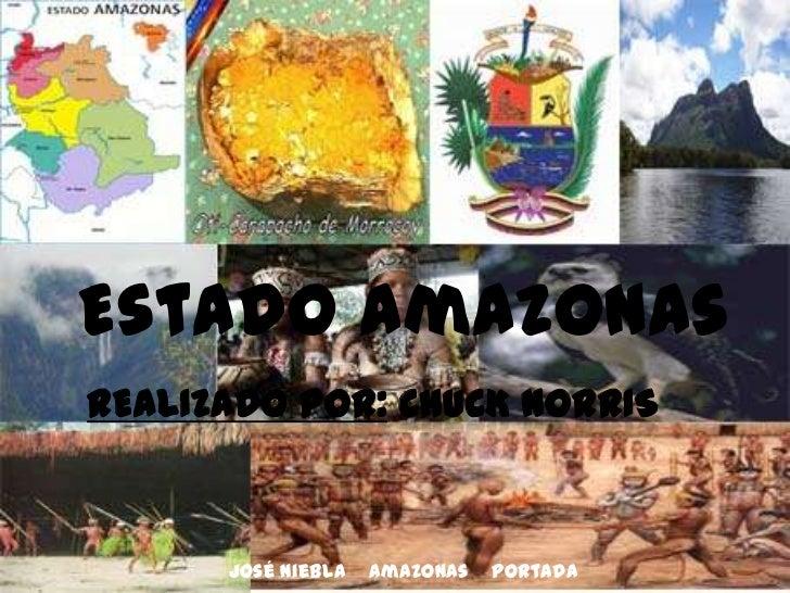 José Niebla    Amazonas    Portada<br />Realizado por: Chuck Norris<br />Estado Amazonas<br />