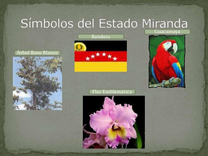 Flor Emblematica Del Estado Miranda | 9b richard rodrigues miranda