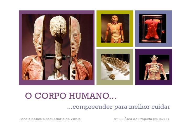 +   O CORPO HUMANO...                           ...compreender para melhor cuidarEscola Básica e Secundária de Vizela     ...