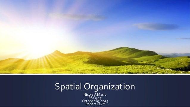 Spatial Organization Nicole A Masio PSY/345 October 19, 2015 Robert Levit
