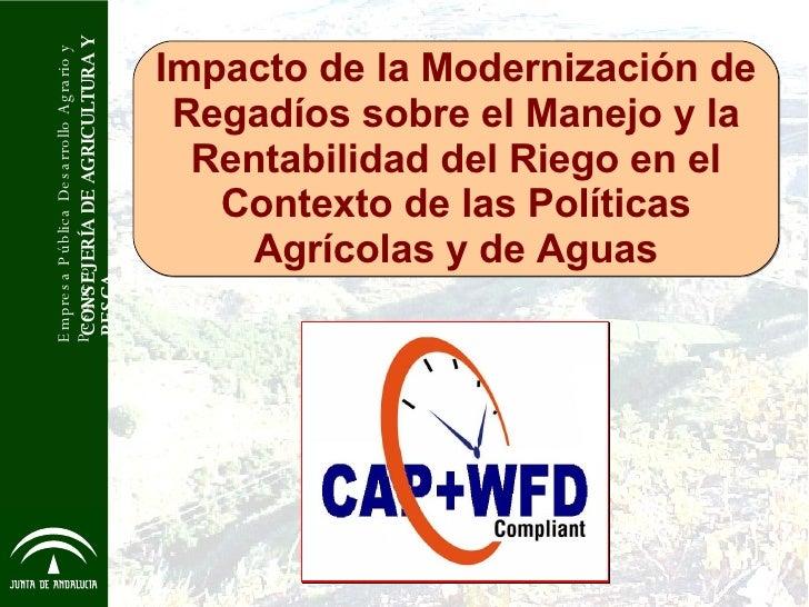 Impacto de la Modernización de Regadíos sobre el Manejo y la Rentabilidad del Riego en el Contexto de las Políticas Agríco...