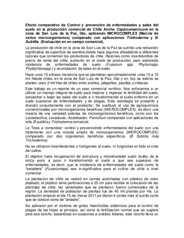 Efecto comparativo de Control y prevención de enfermedades y sales del suelo en la producción comercial de Chile Ancho Cap...