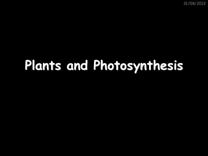 31/08/2012Plants and Photosynthesis