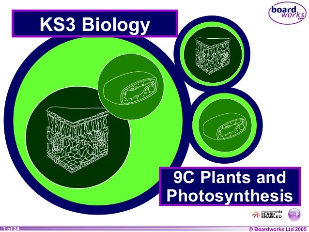 KS3 Biology                         9C Plants and                        Photosynthesis1 of 24     20                     ...