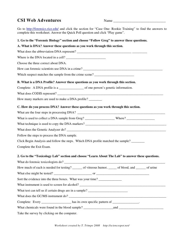 Geometry Rotation Worksheet Answers Worksheets for all | Download ...