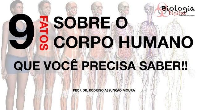 9 Curiosidades sobre o corpo humano